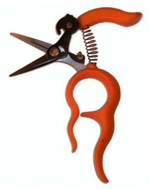 Free Fingers Harvesting, Gardening, Floral, Bonsai, Multipurpose Scissors 12 cm/4.75 inch - Saboten 1318 Made in Japan