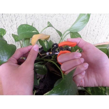 """Free Fingers"" Bonsai, Gardening, Floral, Multipurpose Scissors 12 cm/4,75 inch"