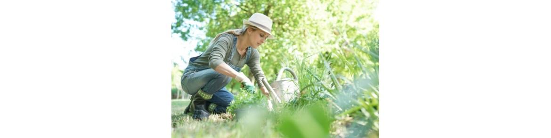 Gartenscheren und Werkzeugen - Tenartis Online Store